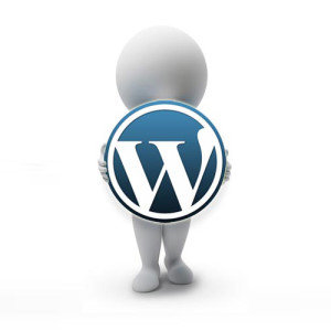 wordpress-guy